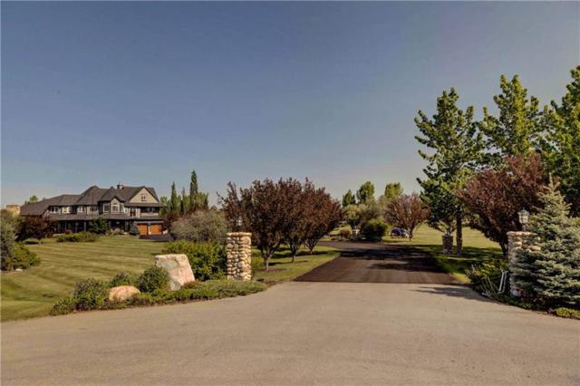 4 Willowside Place, Rural Foothills County, AB T1S 1A2 (#C4263014) :: Calgary Homefinders