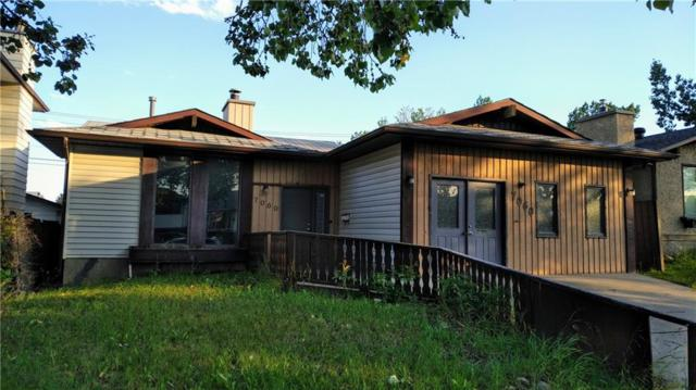 7060 Temple Drive NE, Calgary, AB T1Y 4E5 (#C4263524) :: The Cliff Stevenson Group