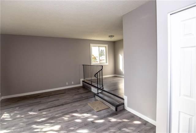 6431 54 Street NE, Calgary, AB T3J 1Z4 (#C4266619) :: Redline Real Estate Group Inc