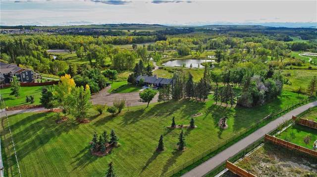 21 Mount Rae Ridge, Okotoks, AB T1S 0M6 (#C4268280) :: The Cliff Stevenson Group