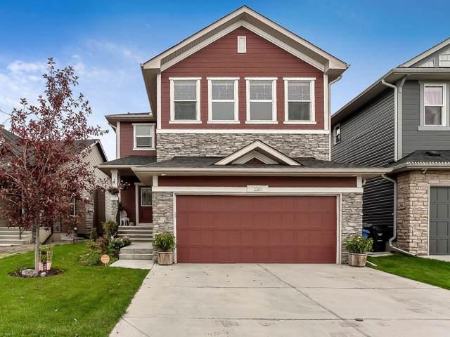 230 Legacy Heights SE, Calgary, AB T2X 0X6 (#C4269652) :: Virtu Real Estate