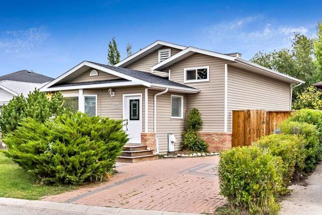 205 Hunters Place, Okotoks, AB T1S 1K8 (#C4269876) :: Redline Real Estate Group Inc
