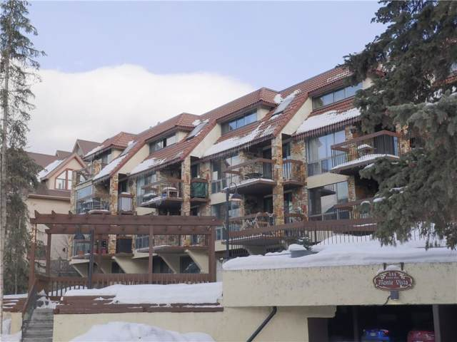 444 Banff Avenue #102, Banff, AB T1L 1C9 (#C4271596) :: Canmore & Banff
