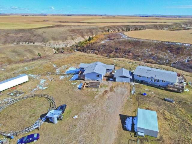 305031 Rr 220, Rural Kneehill County, AB T0J 0Y0 (#C4271833) :: Redline Real Estate Group Inc