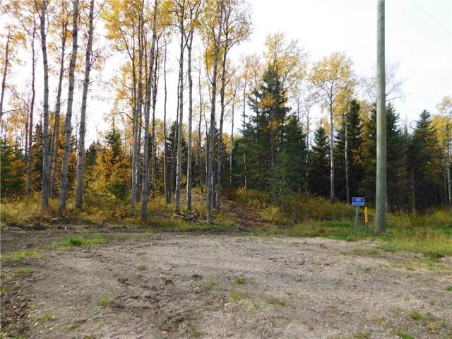 Blue Berry Meadows Lane, Rural Clearwater County, AB T0M 1H0 (#C4272234) :: The Cliff Stevenson Group