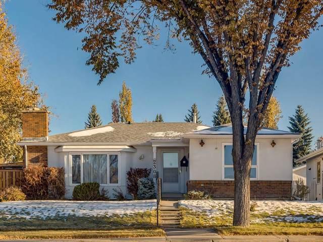 2308 Palliser Drive SW, Calgary, AB T2V 3S6 (#C4272355) :: Redline Real Estate Group Inc