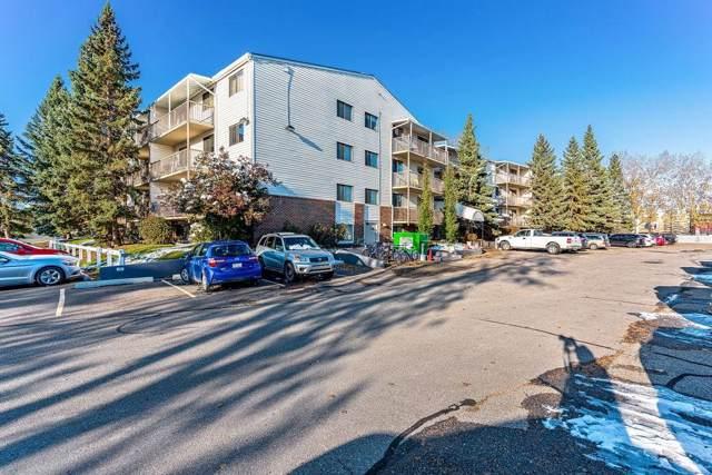 3420 50 Street NW #203, Calgary, AB T3A 2E1 (#C4272369) :: Redline Real Estate Group Inc