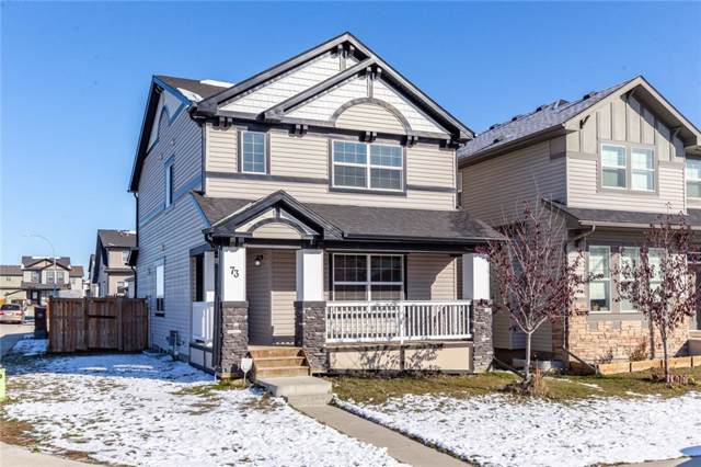 73 Skyview Springs Crescent NE, Calgary, AB T3N 0B9 (#C4272535) :: Redline Real Estate Group Inc