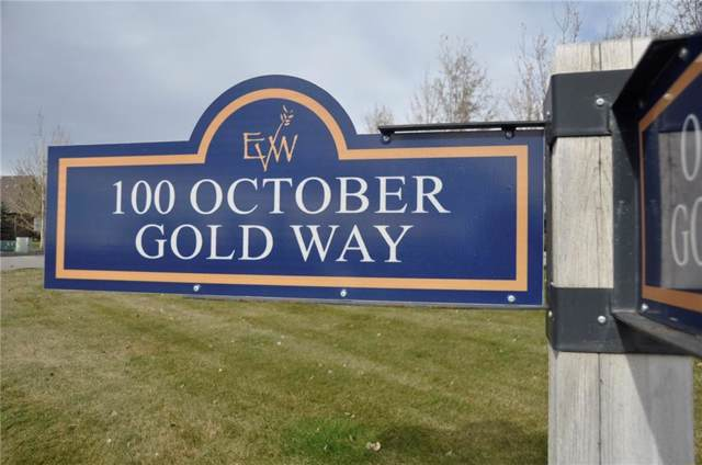 102 October Gold Way, Rural Rocky View County, AB T3Z 0A3 (#C4272549) :: Virtu Real Estate