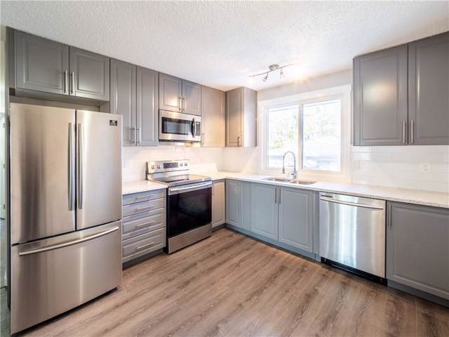 240 Whiteview Road NE, Calgary, AB T1Y 1P6 (#C4272579) :: Virtu Real Estate