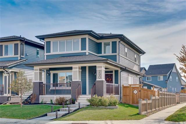 290 Marquis Court SE, Calgary, AB T3M 1Y1 (#C4272626) :: The Cliff Stevenson Group