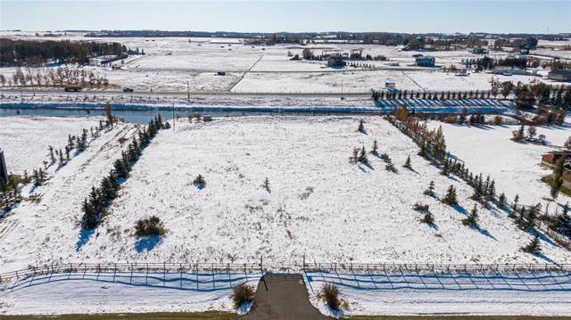 57 Norris Coulee Trail, Rural Foothills County, AB T1S 5A5 (#C4272790) :: The Cliff Stevenson Group