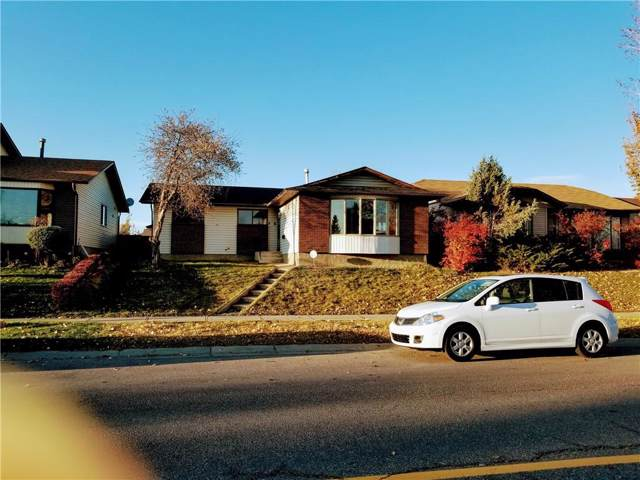 7115 Temple Drive NE, Calgary, AB T1Y 4Z4 (#C4273242) :: Calgary Homefinders