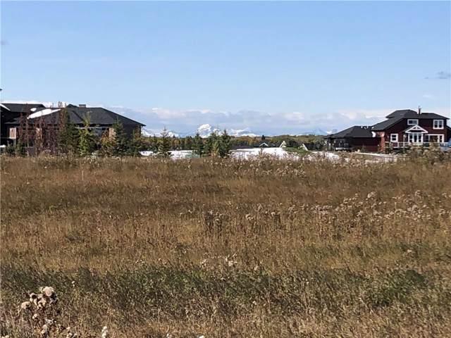 131 Brown Bear Point(E), Rural Rocky View County, AB T4C 0B5 (#C4273778) :: Virtu Real Estate