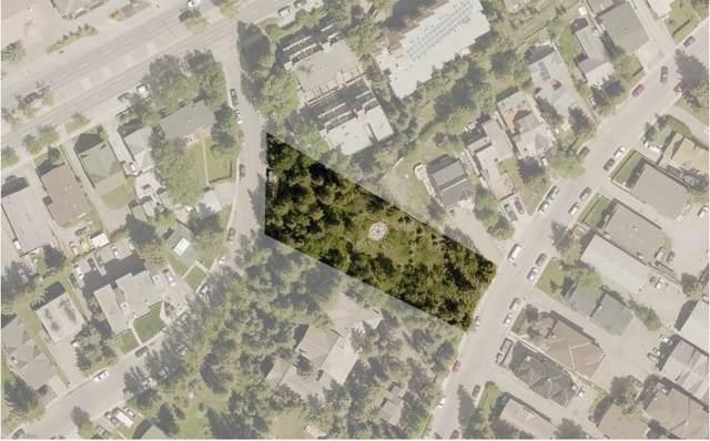 425 Muskrat Street, Banff, AB T1L 1H1 (#C4274485) :: Canmore & Banff