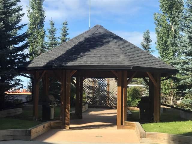 1727 54 Street SE #208, Calgary, AB T2A 1B7 (#C4275525) :: Virtu Real Estate