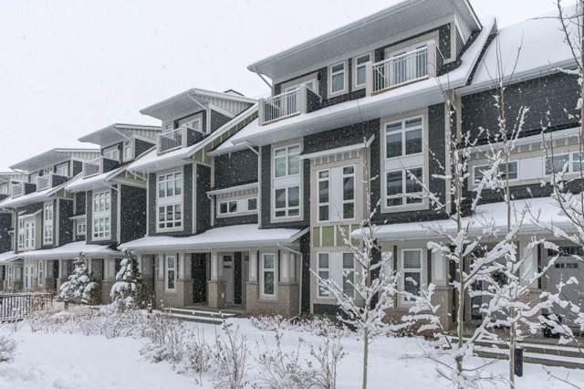 251 Silverado Plains Park SW, Calgary, AB T2X 1Y9 (#C4276222) :: Canmore & Banff