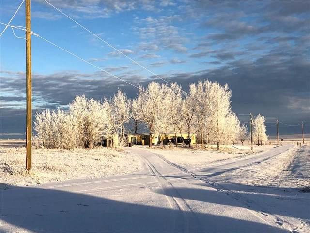251011 Twp Rd 180, Rural Vulcan County, AB T0L 2B0 (#C4276494) :: Calgary Homefinders