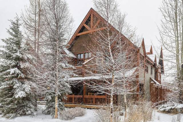 201 Muskrat Street #301, Banff, AB T1L 1A5 (#C4276563) :: Canmore & Banff
