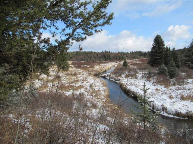 Range Road 7-0, Rural Clearwater County, AB T0M 0M0 (#C4277768) :: Redline Real Estate Group Inc