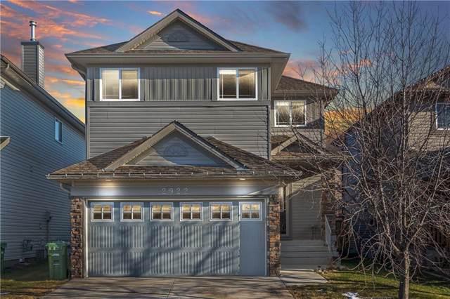 2922 Prairie Springs Grove SW, Airdrie, AB T4B 0E7 (#C4277792) :: Virtu Real Estate
