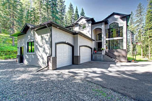 249 Mountain Lion Drive, Rural Rocky View County, AB T0L 0K0 (#C4277867) :: Redline Real Estate Group Inc