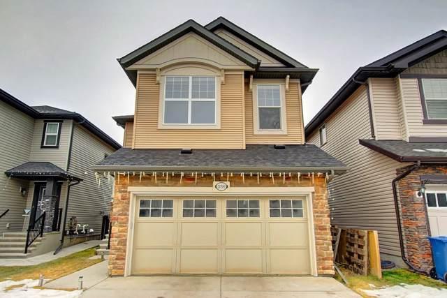 356 Skyview Shores Manor NE, Calgary, AB T3N 0H5 (#C4277892) :: The Cliff Stevenson Group