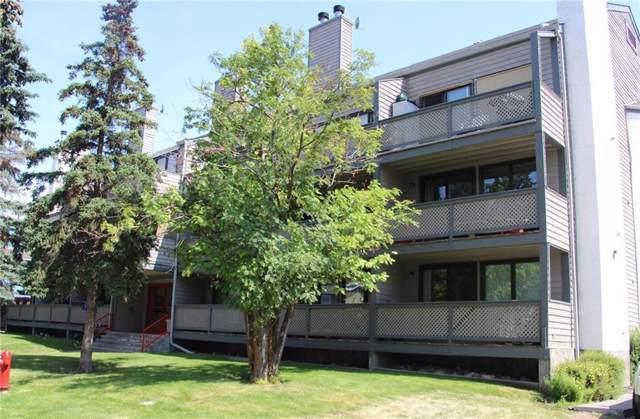 414 Squirrel Street #205, Banff, AB T1L 1A1 (#C4278118) :: Canmore & Banff