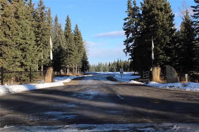 32351 Range Rd 55 Sundre, Rural Mountain View County, AB T0M 1X0 (#C4278509) :: The Cliff Stevenson Group