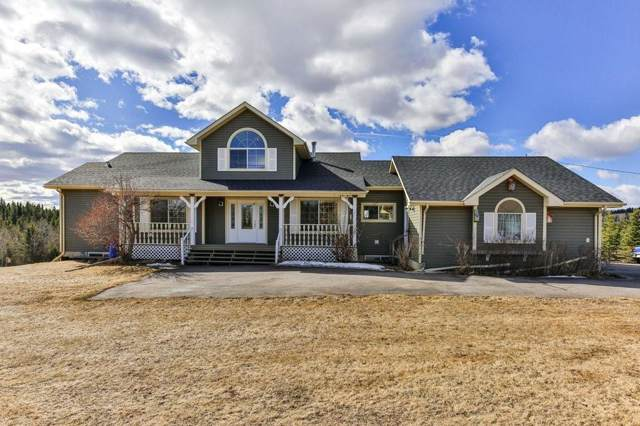 65183 Jamieson Road, Rural Bighorn M.D., AB T4C 1B7 (#C4279198) :: Canmore & Banff