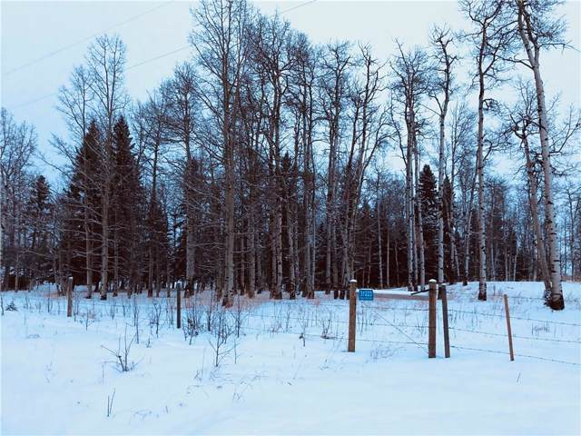 31223 Rr 5, Rural Mountain View County, AB T0M 0W0 (#C4279208) :: Redline Real Estate Group Inc