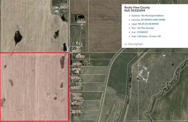 280 Range Road NE, Rural Rocky View County, AB T1Z 0C4 (#C4279234) :: Calgary Homefinders