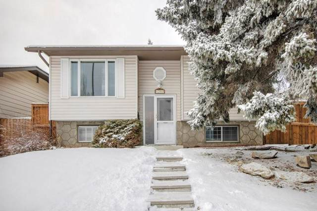 6260 Silver Springs Hill(S) NW, Calgary, AB T3B 3E6 (#C4279322) :: Calgary Homefinders