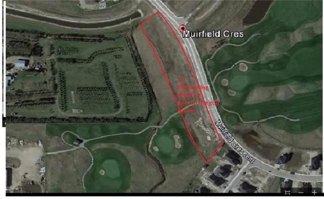 440 Muirfield Crescent, Lyalta, AB T0J 1Y1 (#C4280260) :: The Cliff Stevenson Group