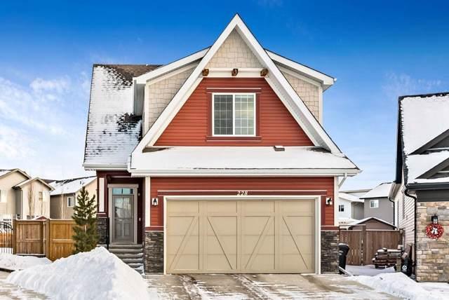 228 Copperpond Green SE, Calgary, AB T2Z 1H9 (#C4280943) :: Redline Real Estate Group Inc