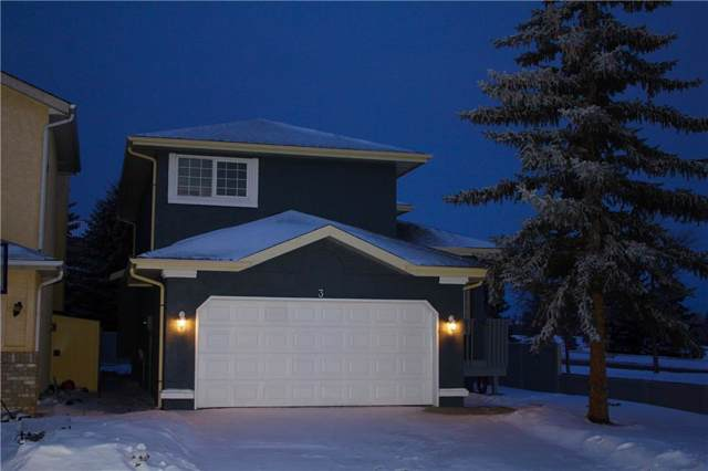 3 Coral Sands Place NE, Calgary, AB  (#C4281100) :: The Cliff Stevenson Group