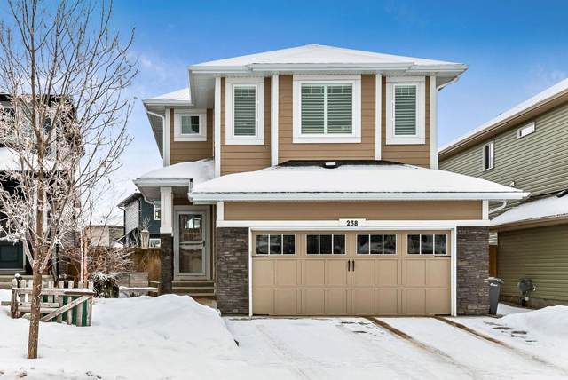 238 Mountainview Drive, Okotoks, AB T1S 0L7 (#C4281239) :: Calgary Homefinders