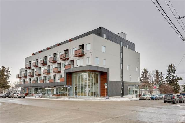 3450 19 Street SW #313, Calgary, AB T2T 6V7 (#C4282228) :: Virtu Real Estate