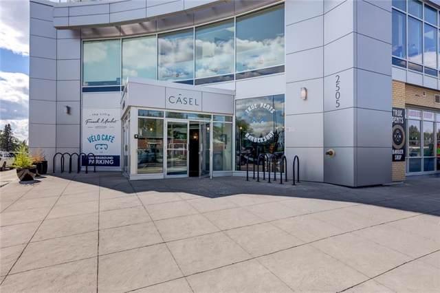2505 17 Avenue SW #503, Calgary, AB T3E 7V3 (#C4282364) :: Virtu Real Estate
