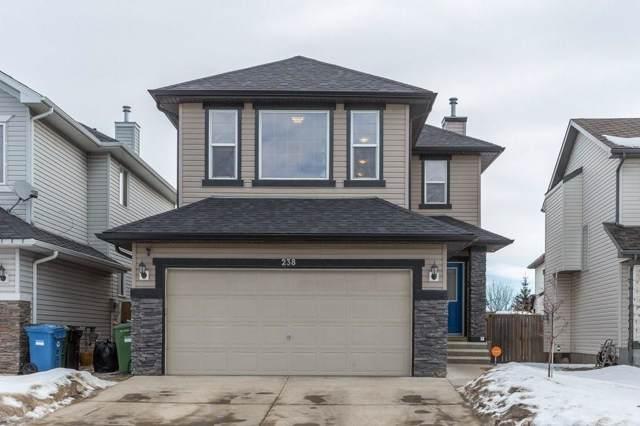 238 Everridge Drive SW, Calgary, AB T2Y 5H2 (#C4282429) :: Redline Real Estate Group Inc