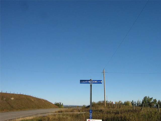 # 18 Crocus Meadows Place W, Rural Foothills County, AB T1S 1A2 (#C4285397) :: Redline Real Estate Group Inc