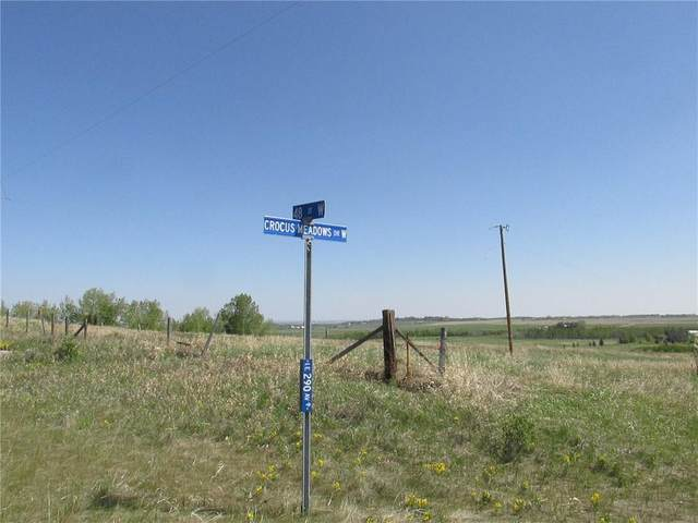 # 19 Crocus Meadows Place W, Rural Foothills County, AB T1S 1A2 (#C4285398) :: Redline Real Estate Group Inc
