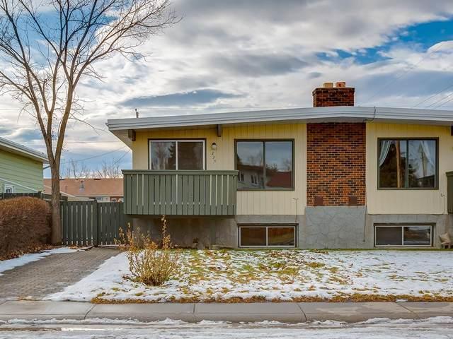 231 Silver Mead Close NW, Calgary, AB T3B 3V5 (#C4287433) :: Calgary Homefinders