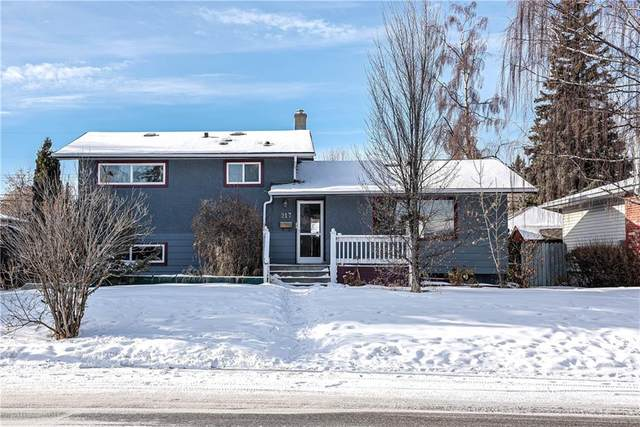 217 Westminster Drive SW, Calgary, AB T3C 2T5 (#C4287864) :: The Cliff Stevenson Group