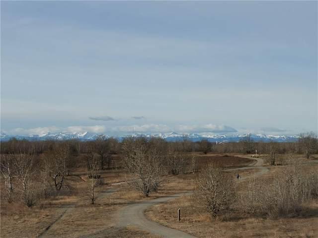 1216 Ninga Road NW, Calgary, AB T2P 2K1 (#C4289793) :: The Cliff Stevenson Group