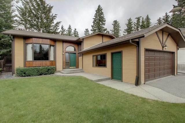 311 Silvertip Close, Canmore, AB T1W 1B6 (#C4290098) :: Calgary Homefinders