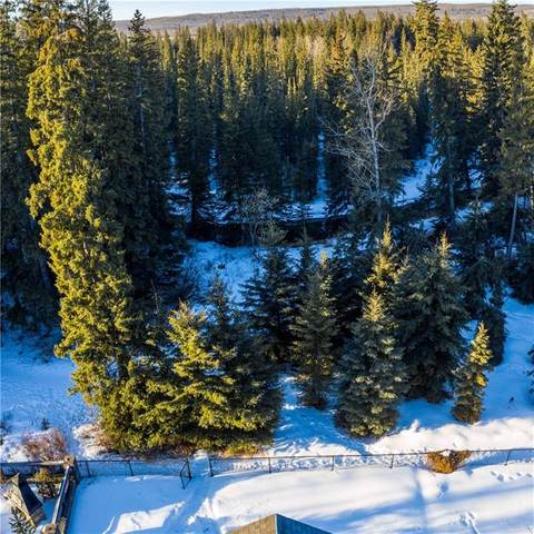 42 Discovery Ridge Manor SW, Calgary, AB T3H 5L9 (#C4290187) :: The Cliff Stevenson Group