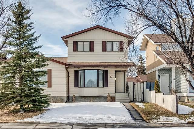 56 Templeridge Crescent NE, Calgary, AB T1Y 4M4 (#C4290809) :: The Cliff Stevenson Group
