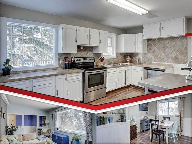 8344 Bowness Road NW, Calgary, AB T3B 0H6 (#C4291530) :: The Cliff Stevenson Group