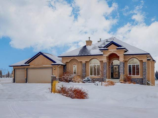 24 Andrew Heights Place, Rural Rocky View County, AB T3Z 3L5 (#C4291577) :: The Cliff Stevenson Group